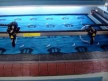 STJ1610 Auto Feeding Fabric Laser Cutting Machine with Dual Heads