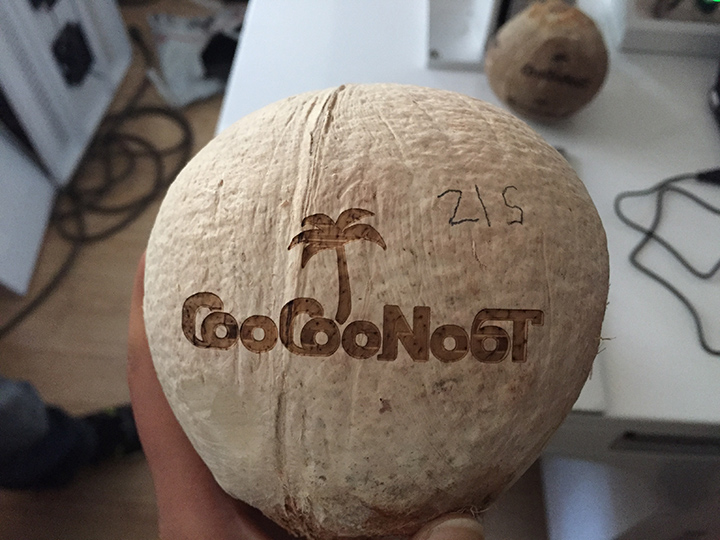 CO2 laser engraving COCONUT