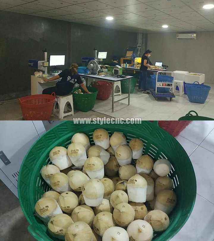 Thailand coconut laser engraving machine