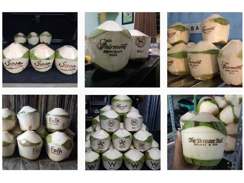 Fresh coconut logo laser engraving projects by CO2 laser marking machine