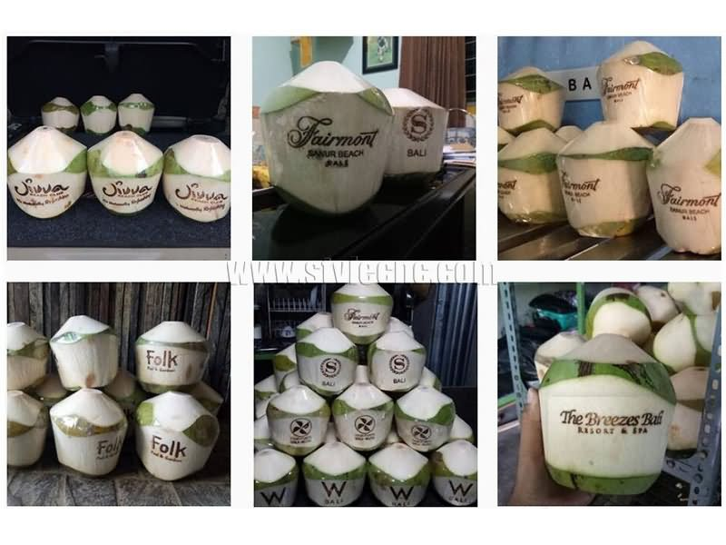 coconut laser engraving machine