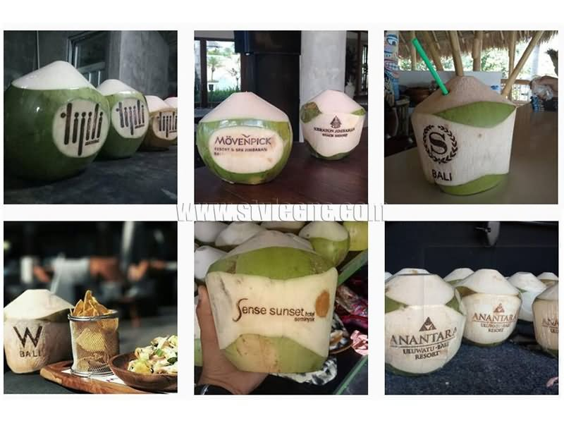 coconut laser marking machine