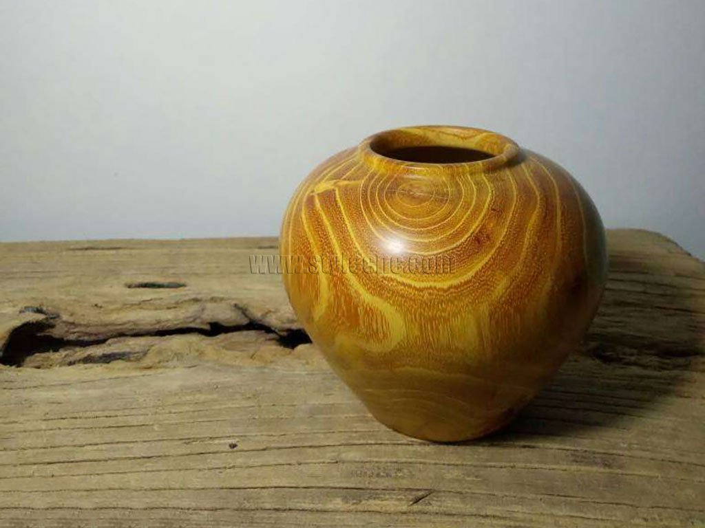 Cudrania Tricuspidata Wood Canister Turning Project by CNC Wood Lathe Machine